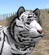 tigerfoot no secondlife